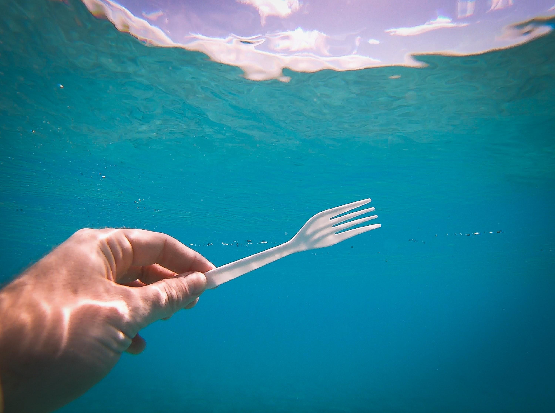 consciencia-ambiental-en-cancun-mx-jpg